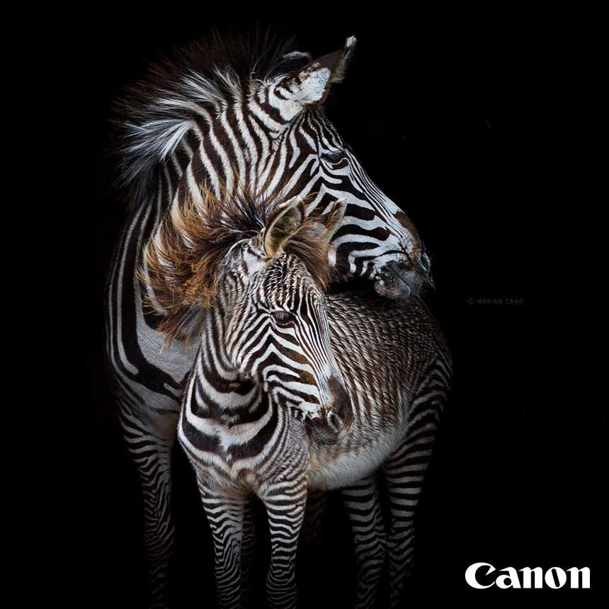La reconocida fotógrafa de naturaleza Marina Cano