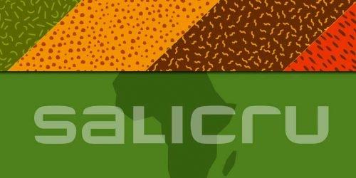 nueva división Salicru África